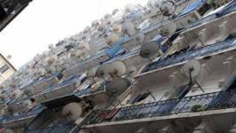 Ces étranges chaînes privées qui inondent l'espace médiatique algérien