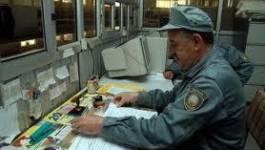 Les douaniers de Bejaïa forcés à participer au reboisement