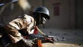 Mali : sept morts dans des combats armés à Gao