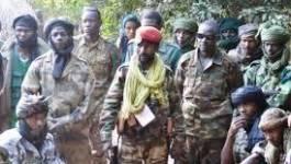 """Centrafrique : cinq ministres """"otages"""" de la rébellion Séléka"""
