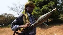 Centrafrique : la Séléka maintient le gouvernement, Bozizé en fuite