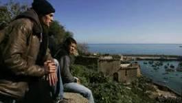 Contribution : L'Algérien a été rendu peu productif car il ne l'est pas de nature