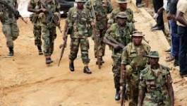 """Massacre de Baga (Nigeria): """"Les soldats ont mis le feu maison par maison"""""""