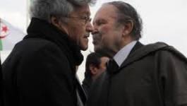 Alger, capitale des cartels, du blanchiment et de la corruption