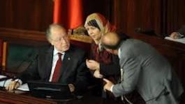 Tunisie : le projet de Constitution retardé sur demande des experts