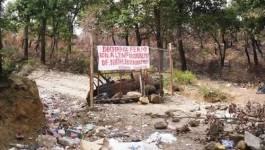 Aït Menguellet, Ideflawen et Abranis pour une opération sur l'environnement samedi à Yakourène