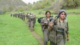 Les Peshmergas du PKK amorcent leur retrait historique de Turquie