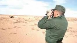 Surveillance renforcée à la frontière algéro-tunisienne
