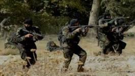 """Tunisie : """"Les islamistes armés traqués sont des vétérans du Mali"""""""