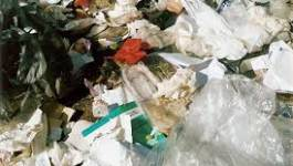 Danger et mauvaise gestion des déchets hospitaliers à Chlef