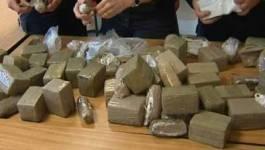41 tonnes de drogues saisies durant les 4 premiers mois de 2013