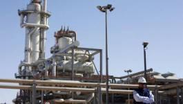 2e sommet du FPEG : quel est l'intérêt de l'Algérie ?