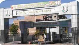 Ouverture officielle du département de tamazight à l'université de Batna
