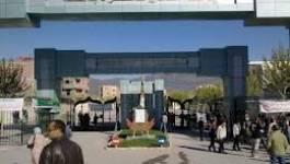Levée de boucliers contre la culture amazighe à Batna