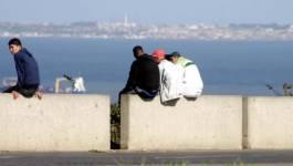 L'Algérie peine à remédier au chômage des jeunes