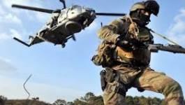 Des commandos des Pays-Bas en renfort au Mali ?