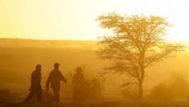 Niger: un drame de l'émigration au Sahara