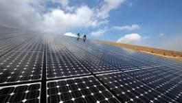 Quelle transition énergétique en Algérie face à la concurrence internationale? (II)