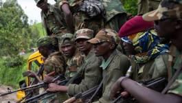 RD Congo : l'armée prend deux places fortes rebelles, un Casque bleu tué