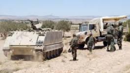 Tunisie : 13 terroristes tués dans des opérations militaires