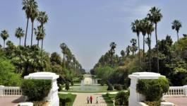 La renaissance du Jardin d'essai d'Alger