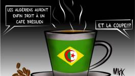 L'Algérie qualifiée au Mondial brésilien