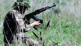 Boumerdès : deux terroristes éliminés par l'ANP