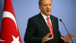 La Turquie et l'Egypte expulsent leurs ambassadeurs respectifs
