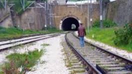 La voie ferrée électrifiée Thenia-Tizi-Ouzou réceptionnée en novembre 2014