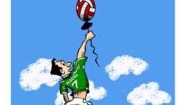 CAN 2014 de handball : l'Algérie au 7e ciel