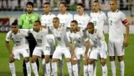 Mondial-2014 (Algérie) : le nouveau maillot des Verts dévoilé le 4 mars
