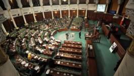 Tunisie : la nouvelle Constitution et la dimension amazighe