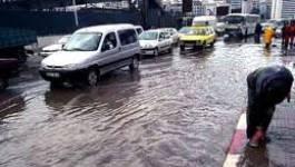 Malgré la pluie, le spectre de la sécheresse plane sur l'Algérie
