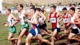 Des athlètes étrangers plus forts à Fréha (Tizi Ouzou)