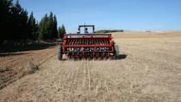 Pauvre agriculture algérienne !