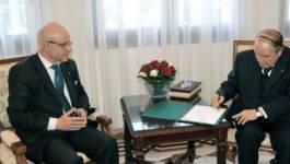 Le Conseil constitutionnel retient Bouteflika et six lièvres