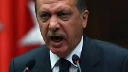 """Turquie : le Premier ministre Erdogan menace de """"supprimer"""" Twitter"""