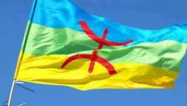 Le Mouvement culturel amazigh exige l'officialisation de tamazight