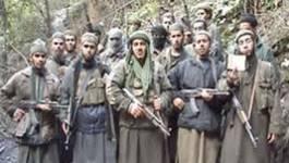 Arrestation de deux terroristes à Tiaret