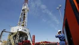 Feu vert de Bouteflika pour l'exploitation du gaz de schiste