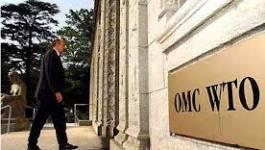Quel intérêt a l'Algérie à adhérer à l'OMC ? (I)