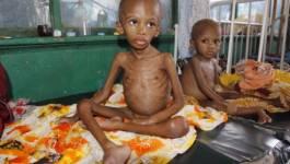 La famine menace la Somalie, des ONG tirent la sonnette d'alarme