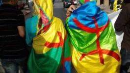 Tamazight et la question de sa co-officialisation constitutionnelle en Algérie