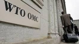 OMC : un front de non-adhésion de l'Algérie se dessine en perspective (1re partie)