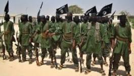 Somalie : les shebab affirment contrôler le palais présidentiel