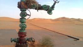 Sonatrach : l'écroulement à pic pour avenir...!