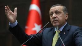 Tayyip Erdogan, premier président élu au suffrage universel en Turquie
