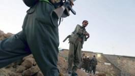La France va livrer des armes aux Kurdes irakiens