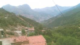 Bavures : trois jeunes Kabyles blessés par l'armée