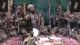 Cameroun :Yaoundé dit avoir tué une centaine de djihadistes